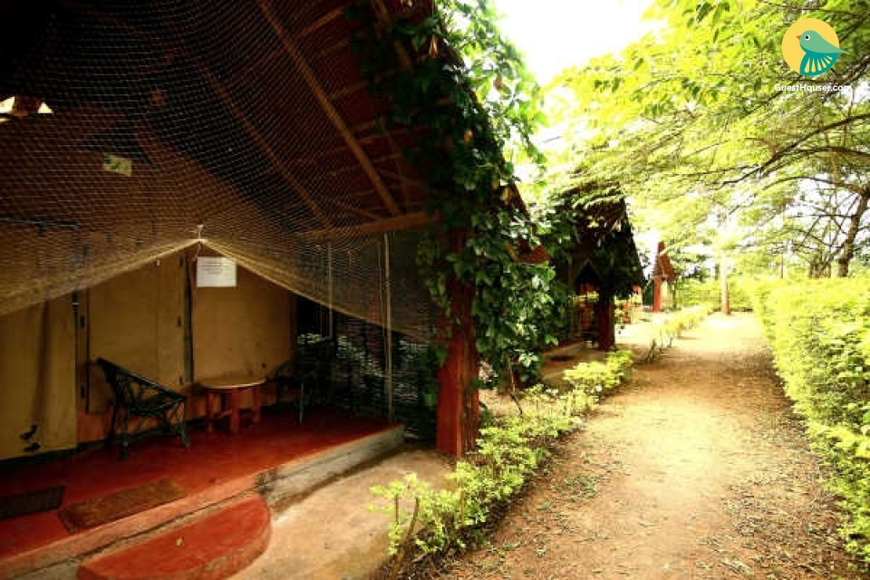 Rejuvenating stay amidst luxuriant greenery