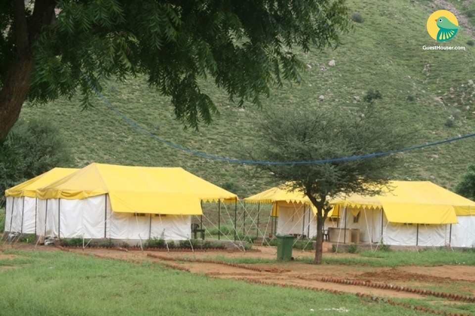 Entire Luxury Tent For Stay