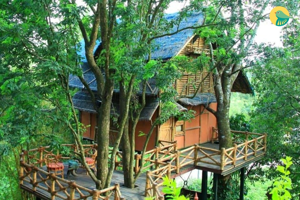 Quaint & romantic 1-bedroom bamboo tree house
