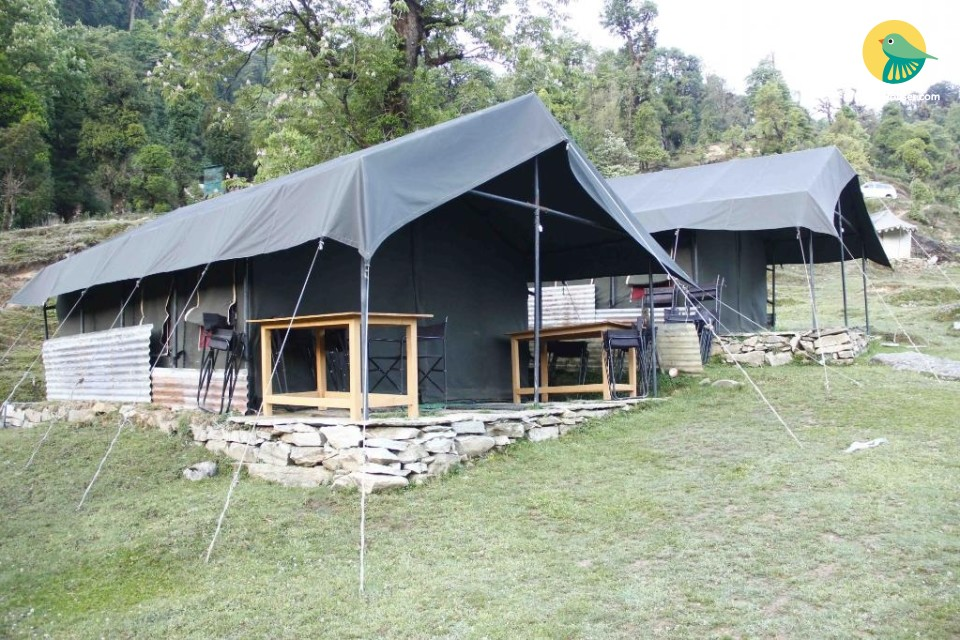 Tents for a Group Stay