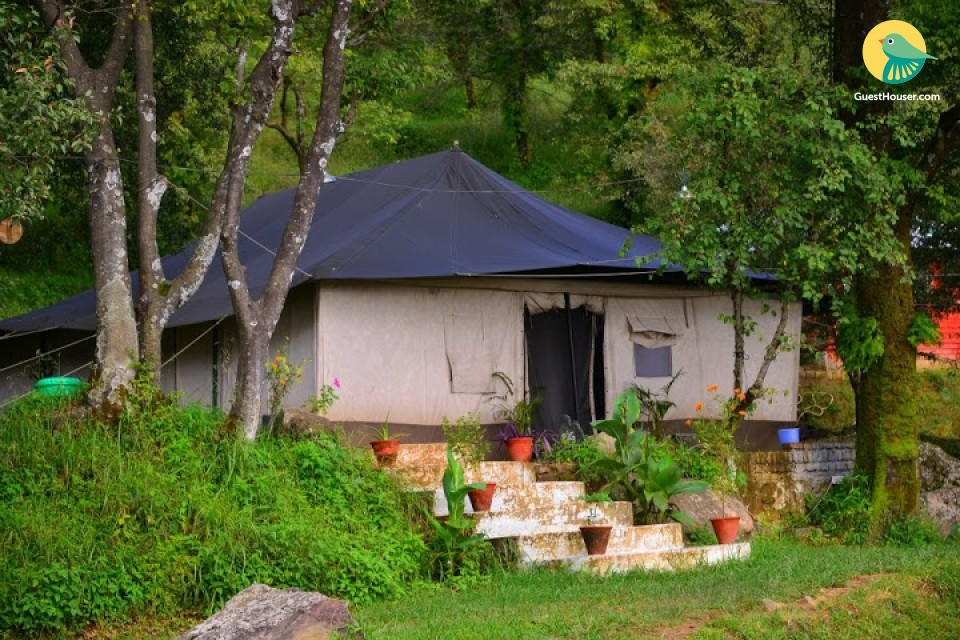 A Shelter to stay in Kangra