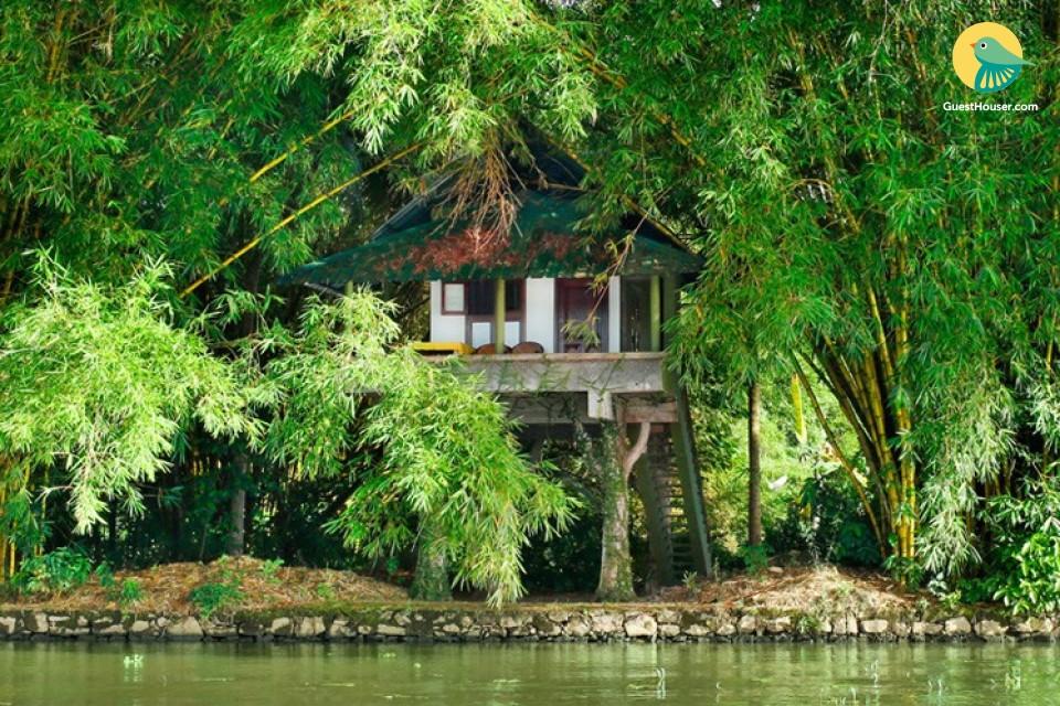 Serene 1-bedroom cottage facing backwaters