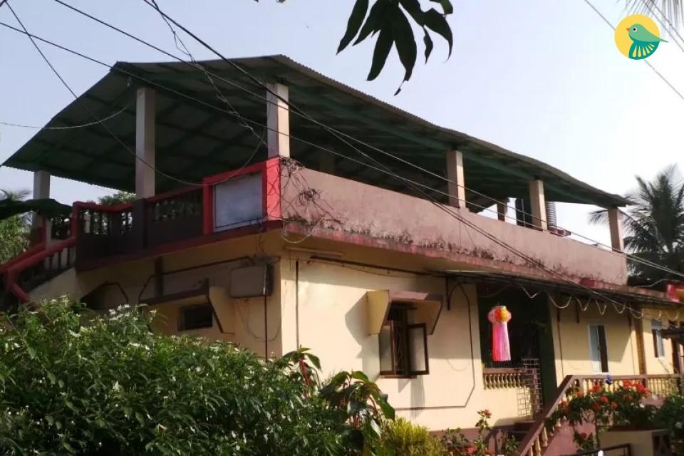 10 Basic Bedrooms near Dense Tropical Grove