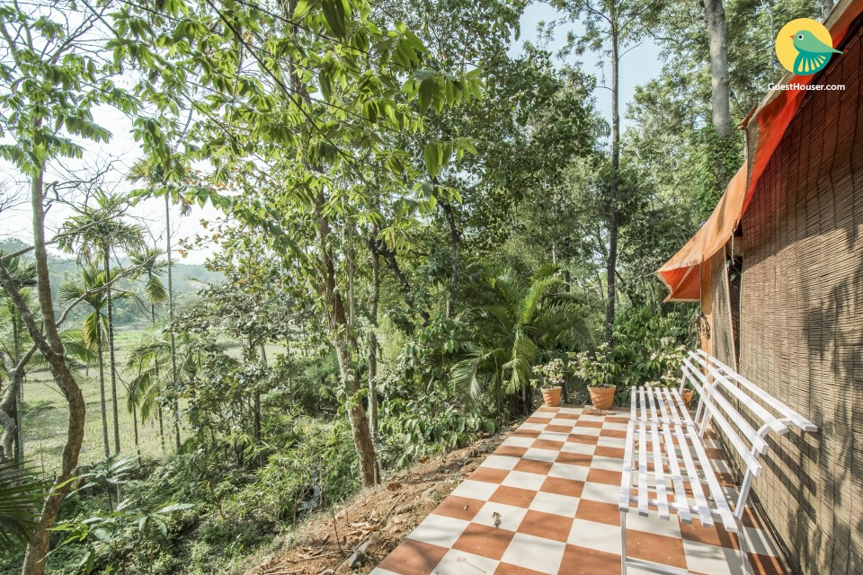Capacious tents amidst lush foliage, ideal for adventurers