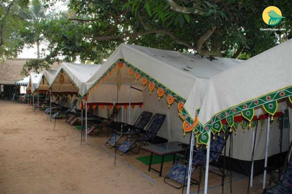 Group stay in lavish camp