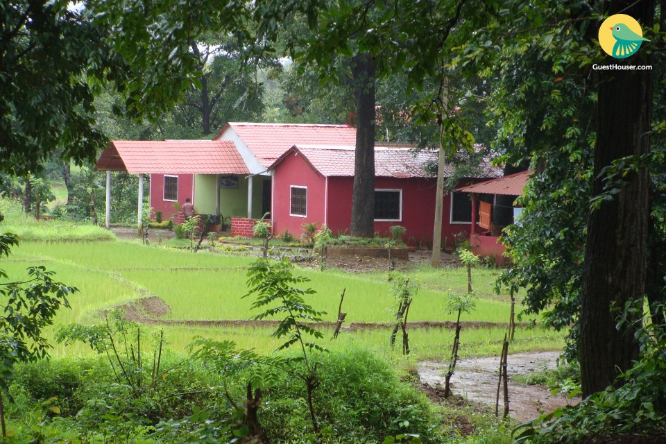 peaceful stay in a homestay
