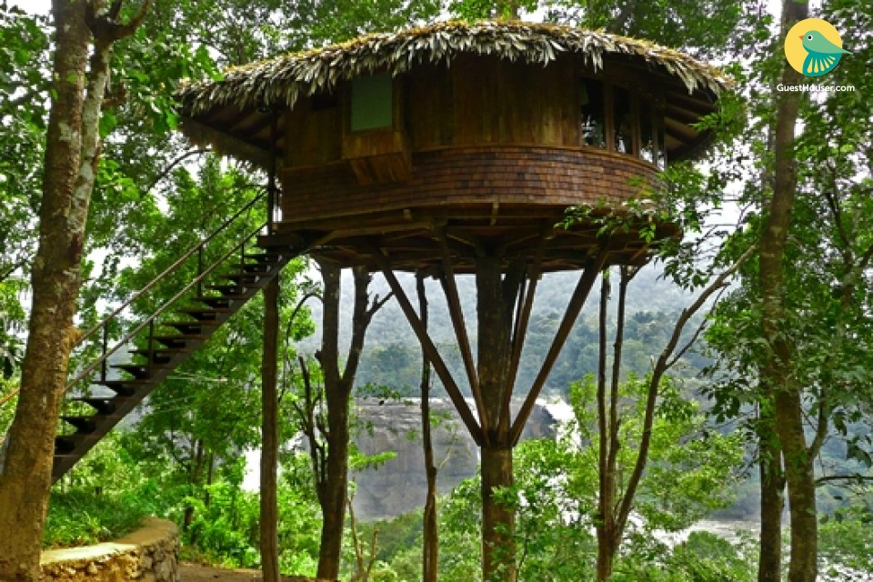 Luxurious 1-BR tree house, overlooking Athirapally Waterfalls