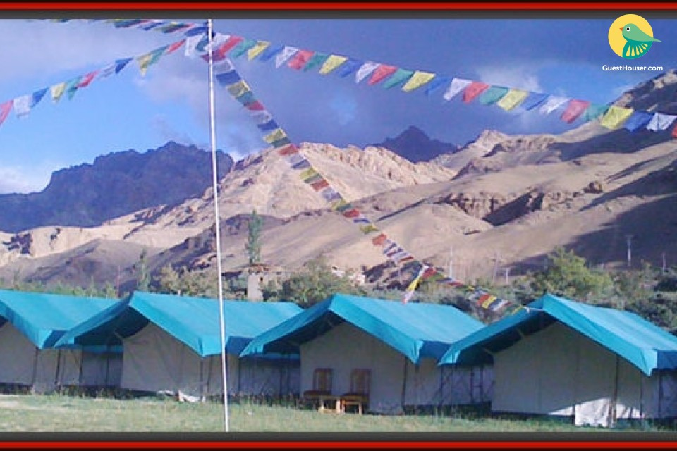 Pleasing Tents for comfortable stay