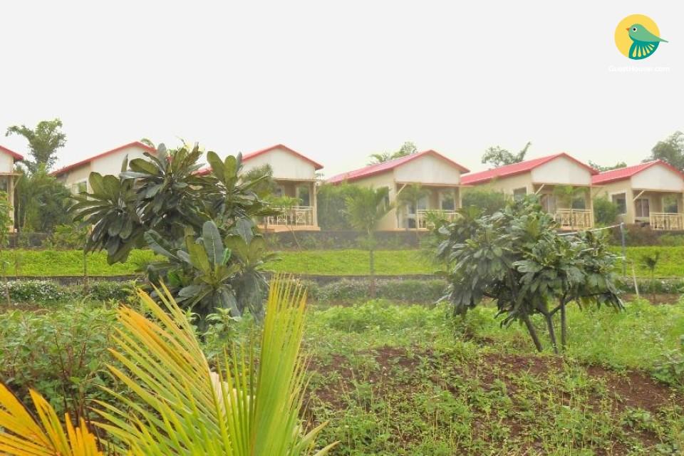 Peaceful Cottage in Nashik