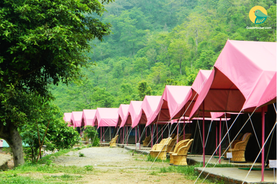 Tent accommodation with complimentary breakfast
