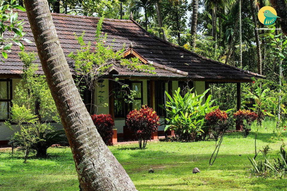 Comfy Twin Room in Pretty Homestay amidst Tropical Groves