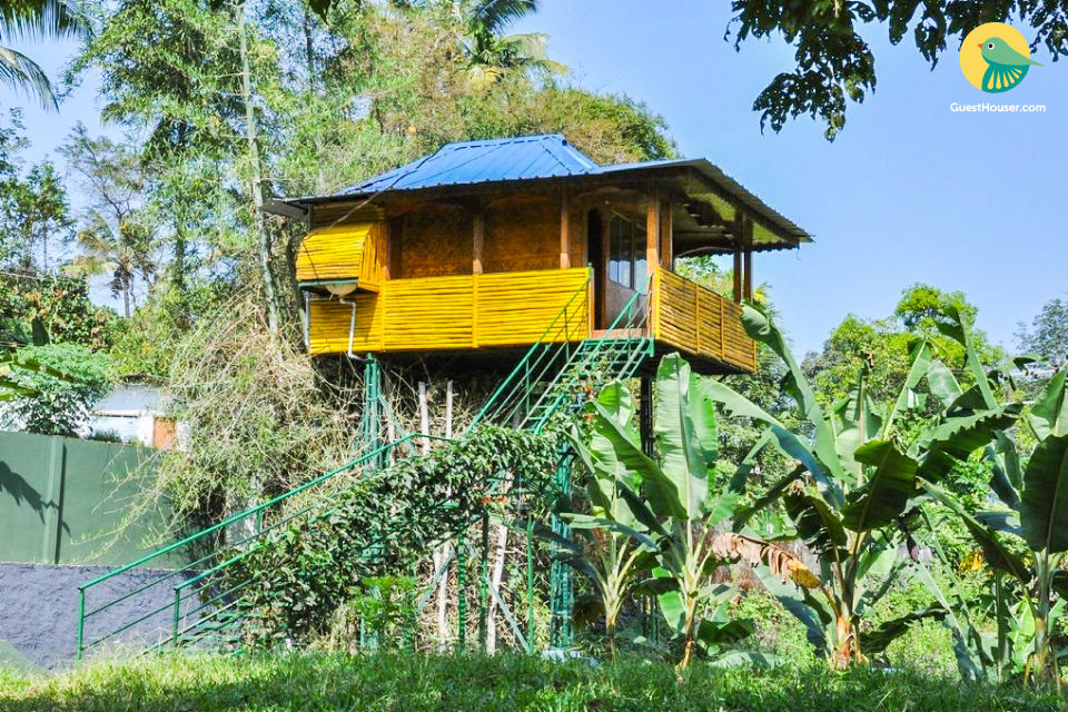 Tree house for couples