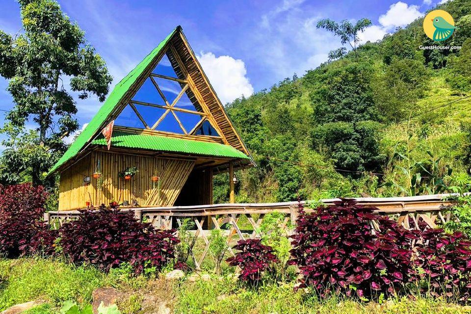 Comfy cottage for four In Darjeeling