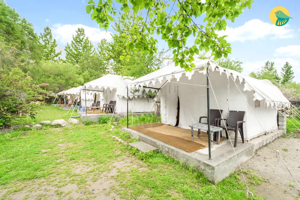 Well-furnished tent for those seeking an adventure