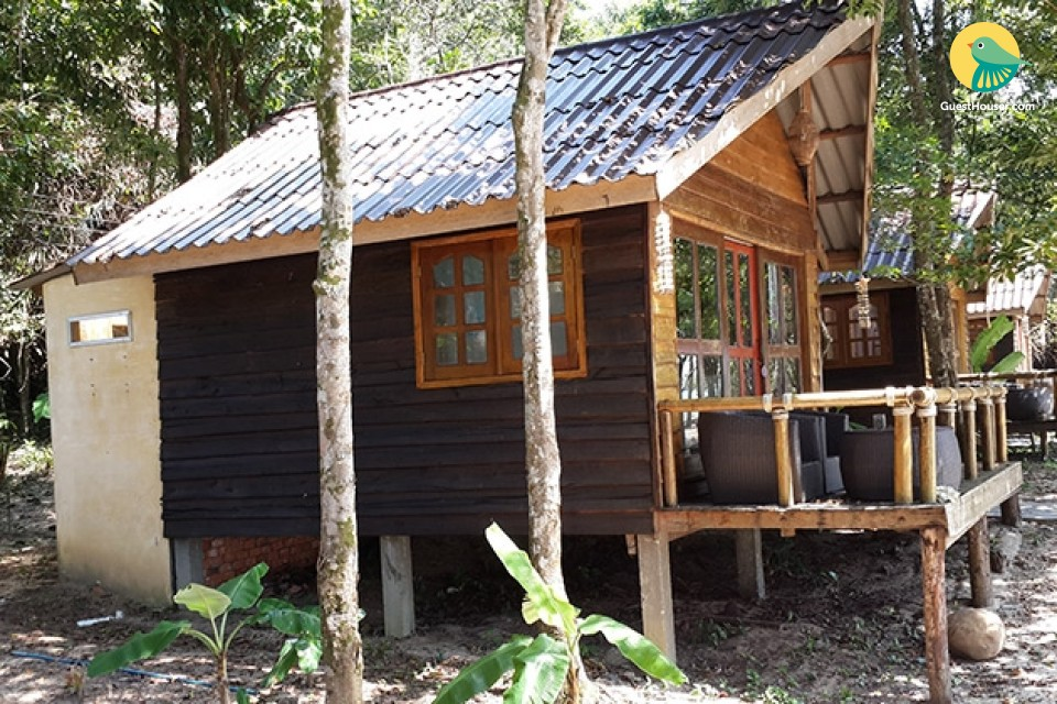 Stay in Wooden Hut