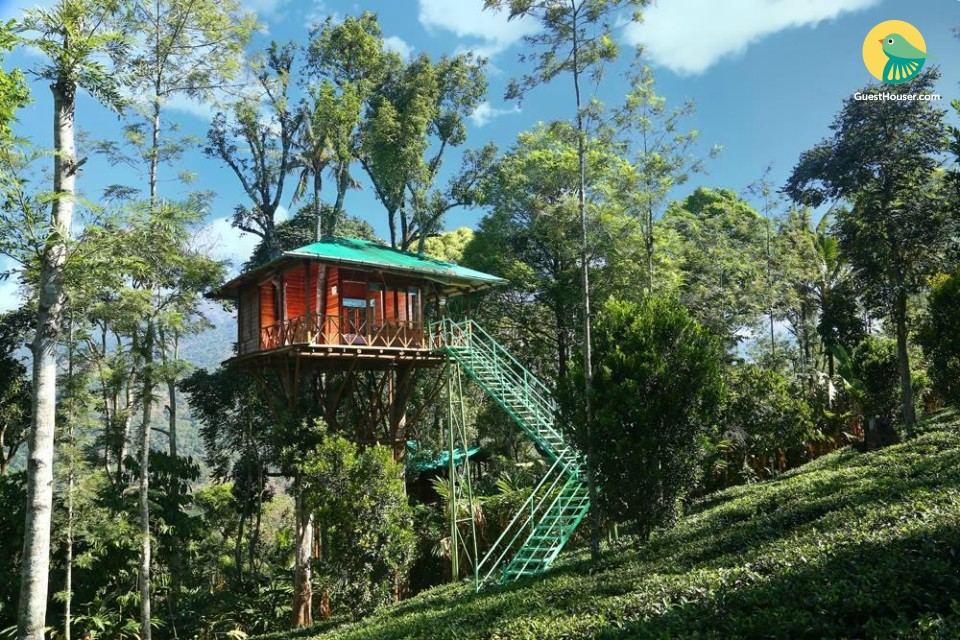 1 BR treehouse for couples