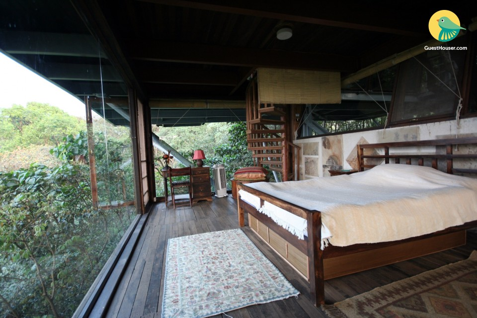 Luxurious Tree House to Stay