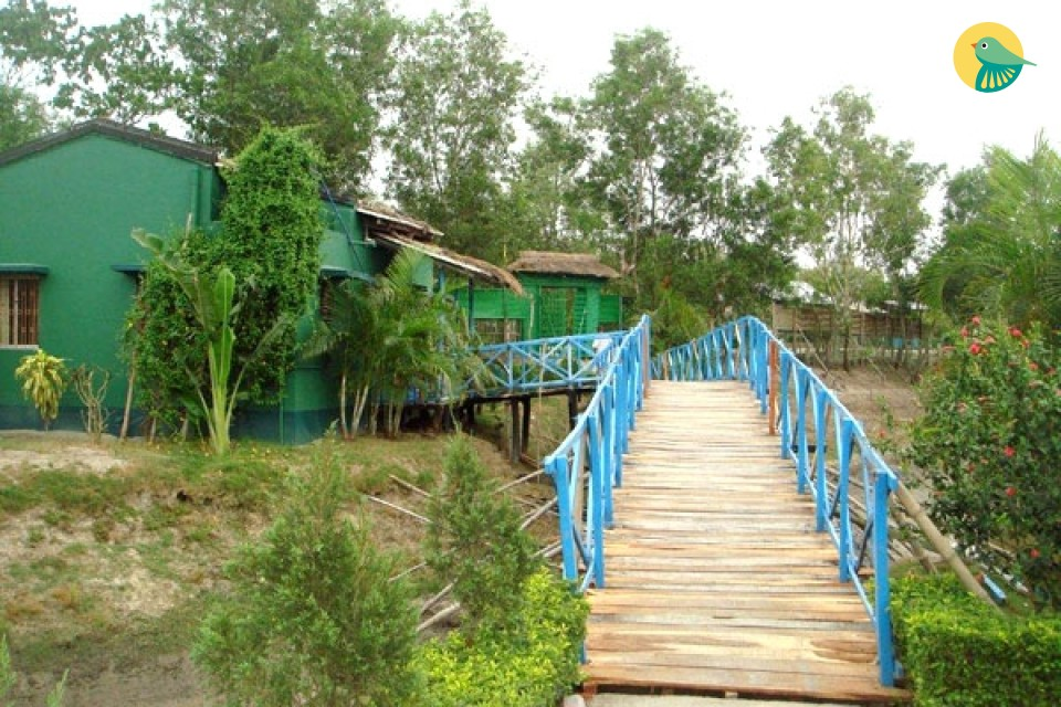 Cosy stay in Sunderbans