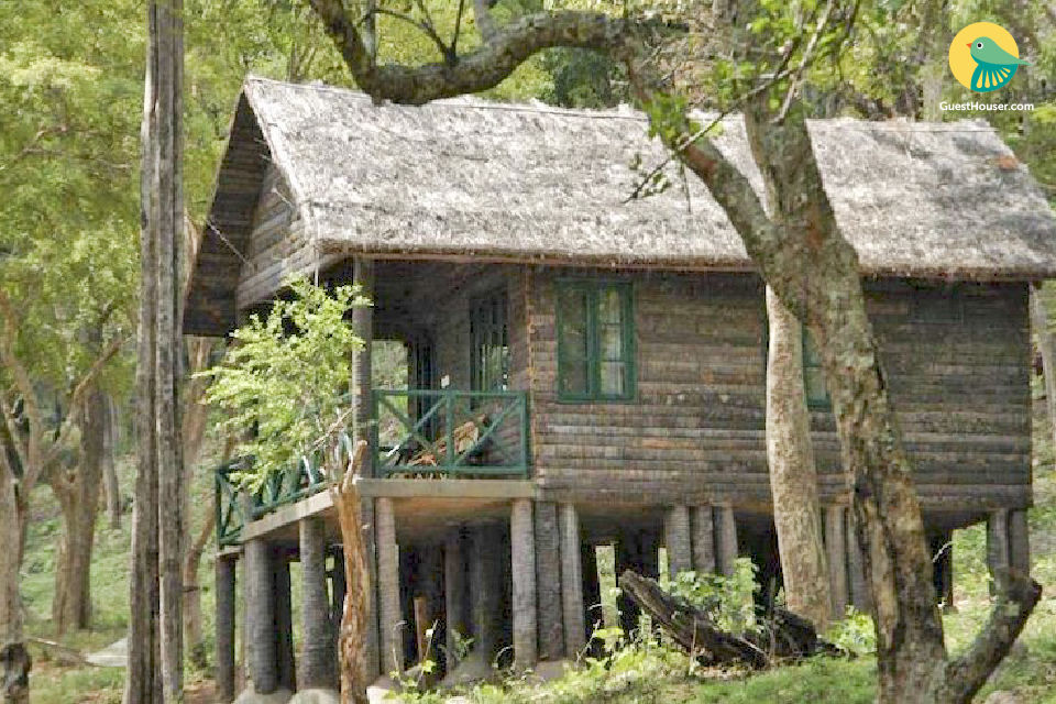Allure Cottage to Home stay