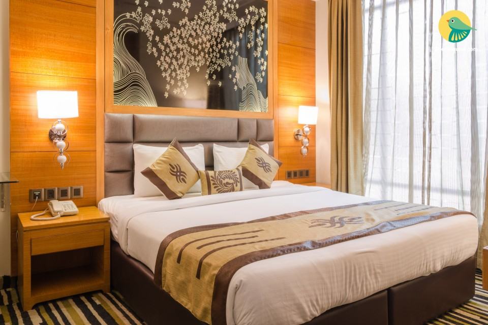 Luxurious stay in South Delhi