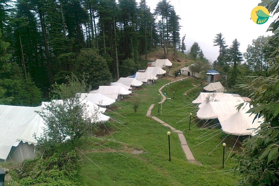 Beautiful camps to stay