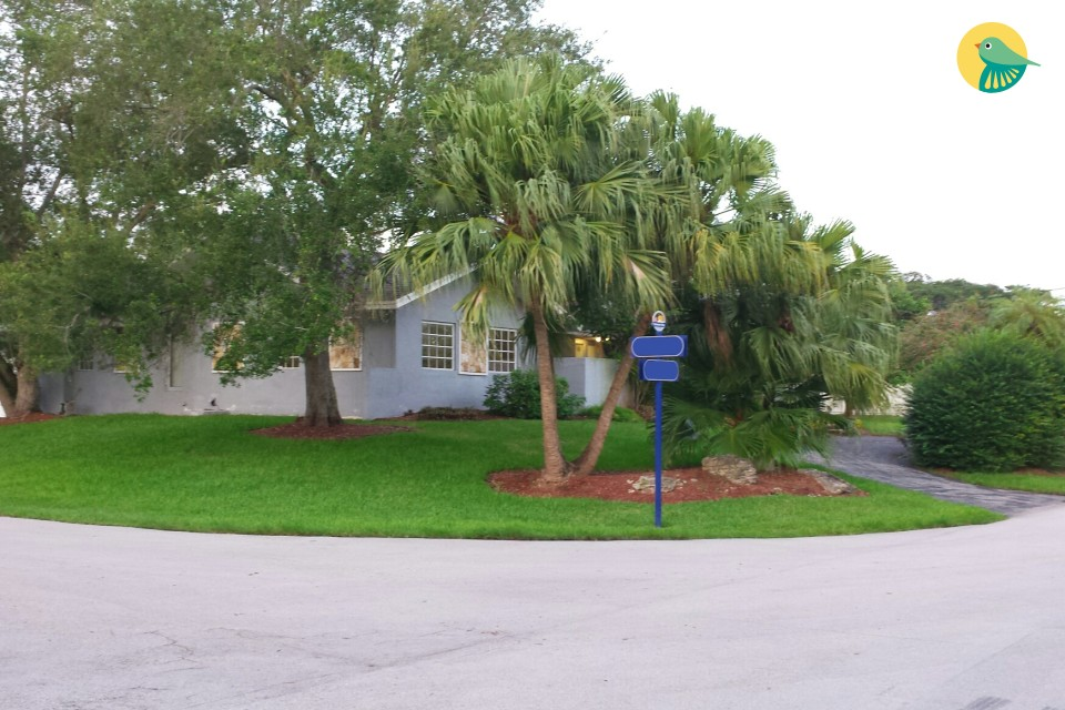 A Gem in Palmetto Bay (Blue)