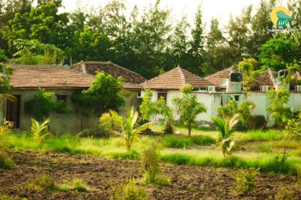 Beautiful cottages sto stay